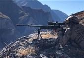 TSK Operasyonunda İki PKK'lı Öldürüldü