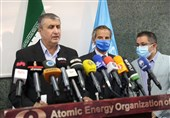 Iran, IAEA Issue Joint Statement during Grossi's Tehran Visit