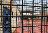 Number of Palestinian Journalists Held in Israeli Jails Rises to 19