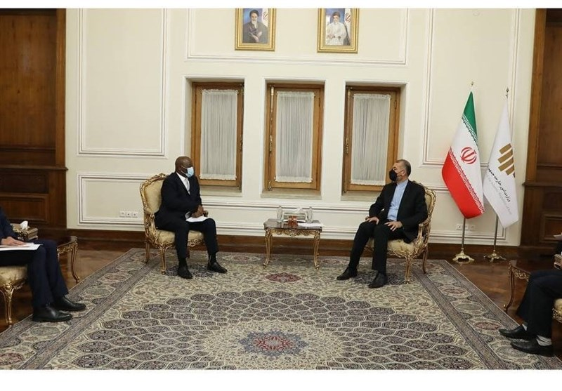 Africa High on Iran's Foreign Policy Agenda: FM