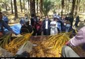 روایت تصویری از بررسی مشکلات برخی روستاهای محروم دشتستان توسط نماینده ولیفقیه در استان بوشهر