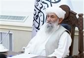 طالبان: افراد نامطلوب از صفوف امارت اسلامی اخراج میشوند