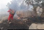 """ورود دستگاه قضایی گلستان به آتشسوزی جنگلهای """" درازنو""""/صدور دستور ویژه برای شناسایی و برخورد با عاملان حادثه"""