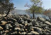 یکه تازی شعلههای آتش در جنگلهای کوه نیر بویراحمد + تصاویر