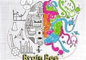 """رقابت مغزها؛ معرفی برگزیدگان مسابقه ملی """"دانش مغز"""" به رقابت جهانی در آمریکا"""