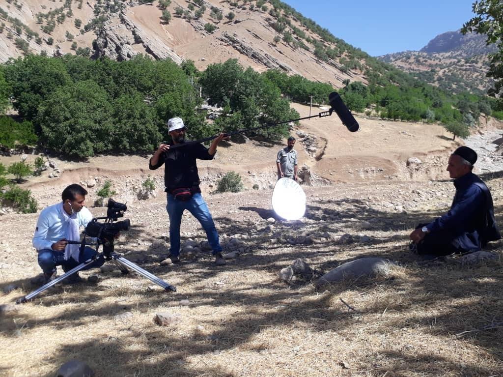 لالایی سوزناک برای نابودی جنگلهای غرب ایران + فیلم