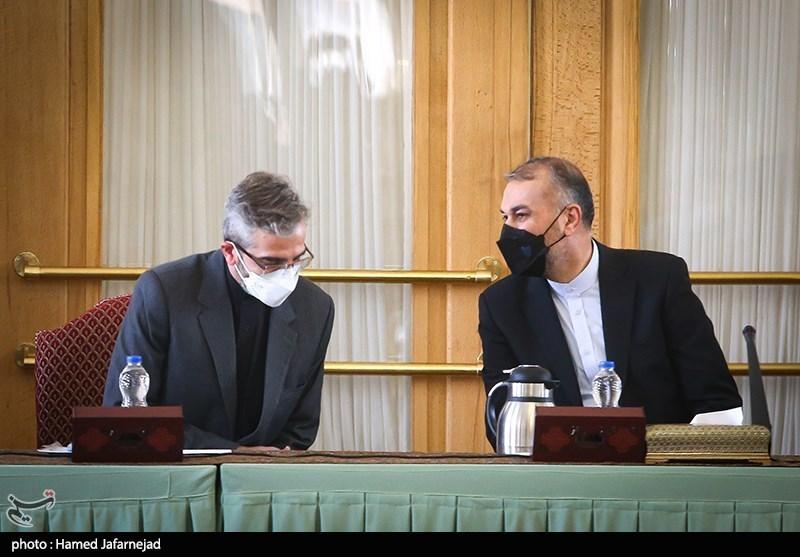 گفت و حسین امیرعبداللهیان وزیر امور خارجه و علی باقری معاون سیاسی وزارت خارجه