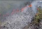 آتشسوزی 12 ساعته در 3 نقطه میانکاله / وسعت حریق بسیار بالا بود/ تجهیزات نبود باران آتش را خاموش کرد