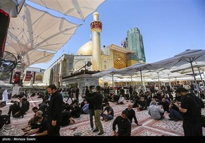 حرم مطهر حضرت علی (ع) در آستانه اربعین حسینی
