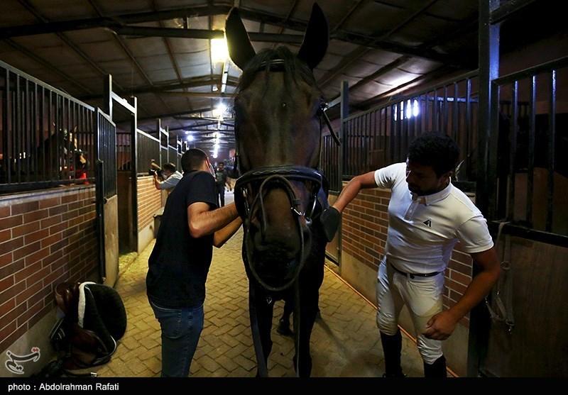 مسابقات قهرمانی پرش با اسب استان همدان