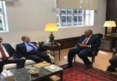 تأکید فیصل مقداد و همتای مصری او بر لزوم پایان بحران سوریه
