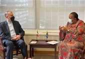Iran, S. Africa Make Arrangements for Joint Commission Meeting