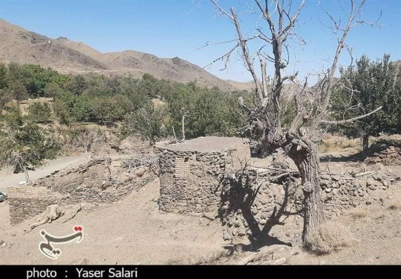 حکایت تکراری خشکسالی در کویر؛ محصولات کشاورزی استان 50 درصد خسارت دید