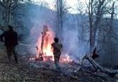 50هکتار از جنگلهای شهرستان بهشهر طعمه حریق شد