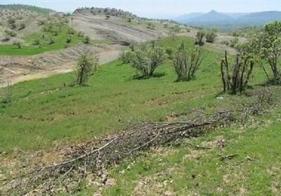 تمام اراضی ملی لرستان تا پایان امسال تثبیت و سند برای آنها صادر میشود