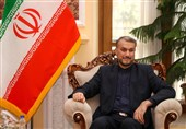 Iran Not to Tolerate Israeli Presence near Its Borders: FM