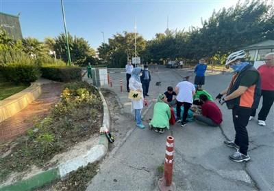 شناسایی راننده خاطی تصادف در پارک پردیسان / سازمان محیط زیست: از کارکنان ما نبود