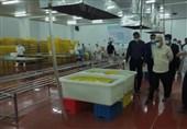 استاندار بوشهر: زنجیره ارزش و چرخه آبزیپروری در استان بوشهر تقویت میشود