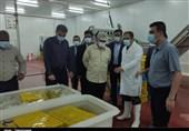 بازدید استاندار بوشهر از طرحهای صنعتی و تولیدی در شهرک صنعتی شمال استان به روایت تصویر