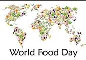 اسراف یکسوم مواد غذایی تولیدشده در جهان/ 811 میلیون نفر شبها گرسنه میخوابند!