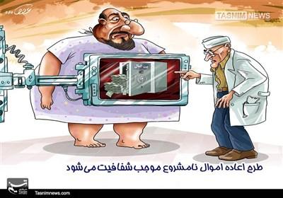 کاریکاتور/ اعاده اموال نامشروع موجب شفافیت میشود